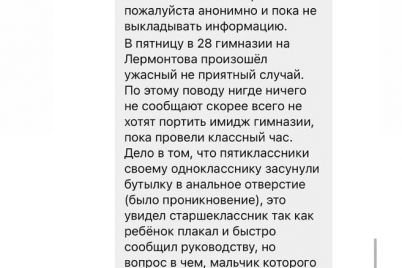u-zaporizkij-gimnazid197-e2849628-zvinuvachuyut-blogera-v-brehni-shho-naspravdi-vidbuvalosya-u-stinah-shkoli.jpg
