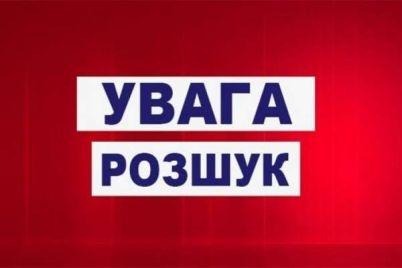 u-zaporizkij-oblasti-rozshukuyut-zniklu-13-richnu-divchinku-foto.jpg