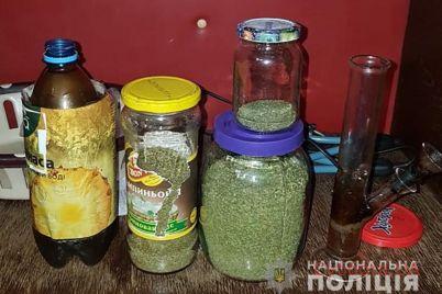 u-zaporozhcza-izuyali-marihuany-na-kruglenkuyu-summu-foto-video.jpg