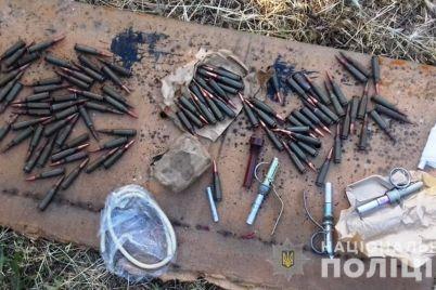 u-zhitelya-zaporozhskoj-oblasti-obnaruzhili-arsenal-boepripasov-foto.jpg
