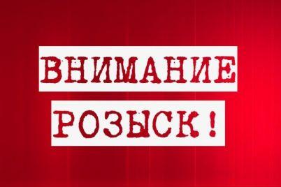 ushel-i-ne-vernulsya-v-zaporozhe-propal-podrostok-orientirovka.jpg