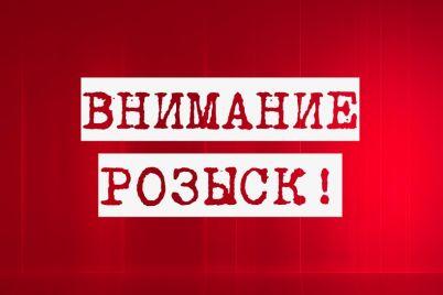 ushla-i-ne-vernulas-v-zaporozhskoj-oblasti-propala-babushka-foto.jpg