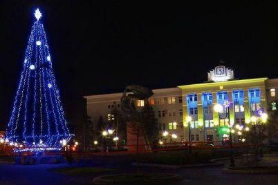 v-berdyanske-s-glavnoj-elki-goroda-ukrali-igrushki-v-policzii-otkryli-ugolovnoe-proizvodstvo.jpg
