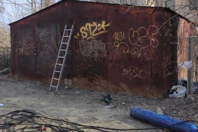 v-chastnom-sektore-zaporozhya-demontirovali-nezakonnyj-garazh-foto.jpg