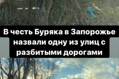 v-chest-mera-zaporozhya-nazvana-ulicza-foto.jpg