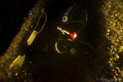 v-dnepre-vozle-ostrova-horticza-issledovali-zatonuvshie-korabli-video.jpg