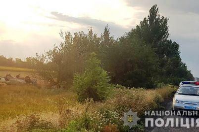 v-dtp-shho-stalasya-v-zaporizkij-oblasti-zagib-vodij-a-pasazhira-ushpitaleno.jpg