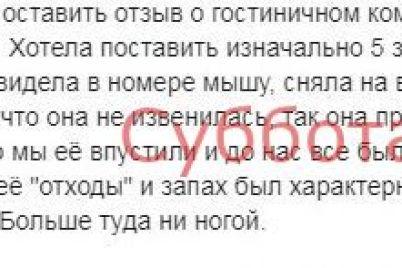 v-gostinicze-na-zaporozhskom-kurorte-otdyhayushhie-zametili-mysh-video.jpg