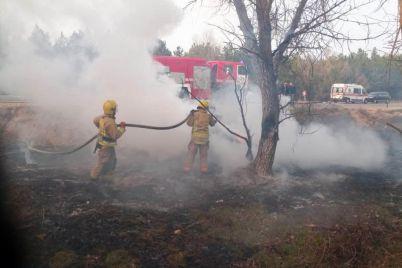 v-hersonskoj-oblasti-v-rezultate-avarii-pogibla-zhitelnicza-zaporozhya-foto.jpg