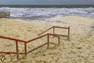 v-kirillovke-zafiksirovan-redkij-prirodnyj-fenomen-cappuccino-coast-fotofakt.jpg