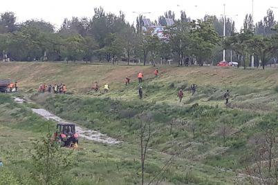 v-landshaftnom-parke-zaporozhya-poyavilas-tehnika-i-desyatki-rabotnikov-foto-video-scaled.jpg