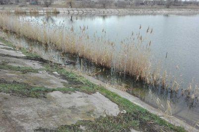 v-melitopolskom-rajone-na-prudu-pogib-muzhchina.jpg