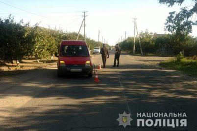 v-melitopolskom-rajone-sbili-12-letnyuyu-devochka-rebenok-v-bolnicze-policziya-ishhet-svidetelej.jpg