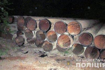 v-melitopolskom-rajone-ukrali-orositelnuyu-sistemu-policziya-otkryla-ugolovnoe-delo-foto.jpg