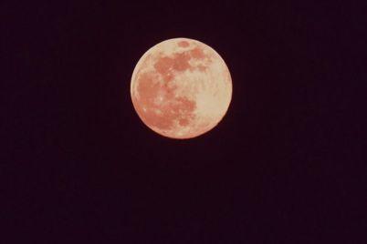 v-nebe-nad-zaporozhem-vzoshla-rozovaya-luna-foto.jpg