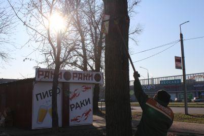 v-odnomu-z-rajoniv-zaporizhzhya-pochali-borotbu-z-zovnishnoyu-reklamoyu.jpg