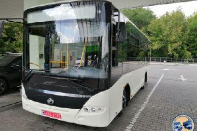 v-seti-opublikovali-foto-novogo-avtobusa-zaz-kotoryj-sobirayut-dlya-polshi.jpg