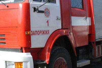 v-spalnom-rajone-zaporozhya-zagorelis-dva-avtomobilya.jpg