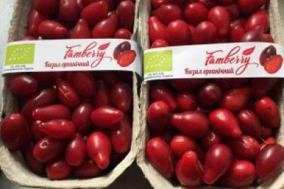 v-treh-krupnyh-setyah-nachali-prodavat-kizil-zaporozhskoj-marki.jpg
