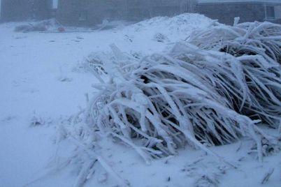 v-ukraine-vypal-pervyj-sneg-foto.jpg