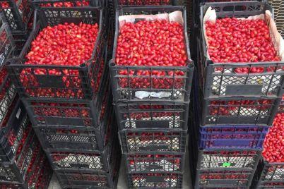 v-ukrainskih-supermarketah-vpervye-poyavilsya-kizil-yagodu-postavlyaet-zaporozhskaya-kompaniya.jpg