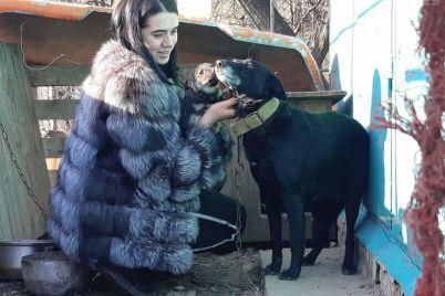 v-zaporizkij-oblasti-narodilosya-shostilape-czuczenya-foto.jpg