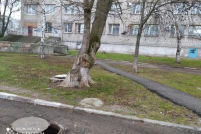 v-zaporozhe-beremennye-devushki-riskuyut-provalitsya-v-kanalizaczionnye-lyuki-foto.jpg