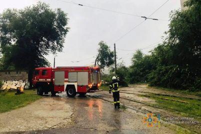 v-zaporozhe-bushuet-nepogoda-veter-valit-derevya.jpg