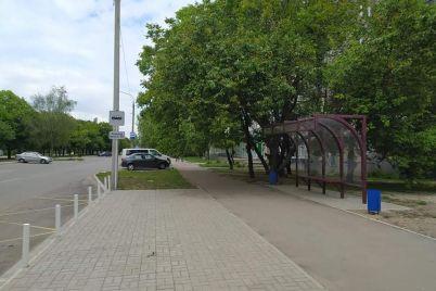 v-zaporozhe-dlya-odnoj-marshrutki-postroyat-tretyu-ostanovku-i-vyrubyat-derevya.jpg