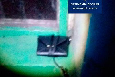 v-zaporozhe-grabitel-ukral-sumku-pryamo-iz-ruk-zhenshhiny.jpg