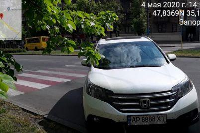 v-zaporozhe-inspektory-po-parkovke-za-narusheniya-ne-shhadili-i-blatnye-avtomobili.jpg