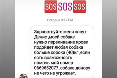 v-zaporozhe-ishhut-donora-krovi-dlya-sobaki.jpg
