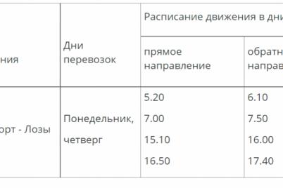 v-zaporozhe-izmenitsya-grafik-avtobusnogo-marshruta-dlya-dachnikov.png