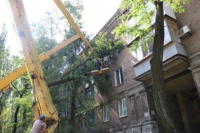 v-zaporozhe-likvidiruyut-posledstviya-bureloma.jpg