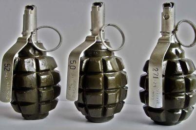 v-zaporozhe-na-detskoj-ploshhadke-obnaruzhili-boevuyu-granatu-video.jpg