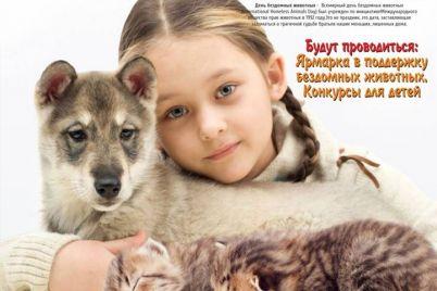 v-zaporozhe-na-ploshhadi-provedut-urok-dobra-priurochennyj-ko-vsemirnomu-dnyu-bezdomnyh-zhivotnyh.jpg