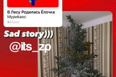 v-zaporozhe-na-video-izvinilis-parni-srubivshie-yolku-na-vecherinku-video.jpg