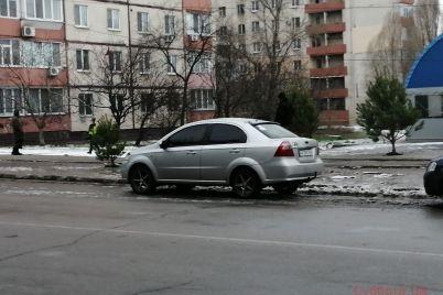 v-zaporozhe-nachali-prodavat-yolki-foto.jpg