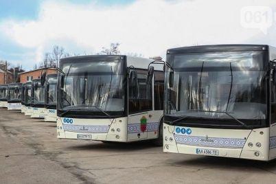 v-zaporozhe-nachali-vnedryat-e-bilet-4-nyuansa-kotorye-portyat-eto-radostnoe-sobytie.jpg