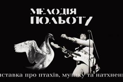 v-zaporozhe-otkroyut-vystavku-kotoruyu-mozhno-poslushat.jpg