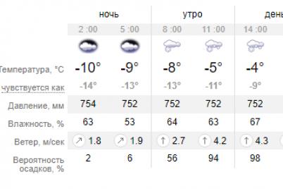 v-zaporozhe-ozhidaetsya-mokryj-sneg-ne-obojdetsya-i-bez-gololediczy.png