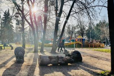 v-zaporozhe-policziya-otkryli-ugolovnoe-delo-po-faktu-gibeli-devochki-v-dubovoj-roshhe.png
