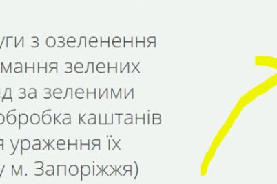 v-zaporozhe-potratyat-sotni-tysyach-na-obrabotku-kashtanov.png