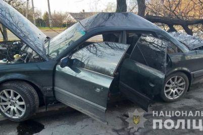 v-zaporozhe-pyanyj-voditel-ustroil-smertelnoe-dtp-foto.jpg