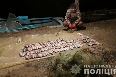 v-zaporozhe-rybak-nezakonno-vylovil-ryby-na-9000-griven-foto.jpg
