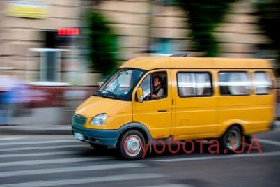 v-zaporozhe-shkolnik-risknul-svoej-zhiznyu-na-glazah-u-desyatkov-lyudej-video.jpg