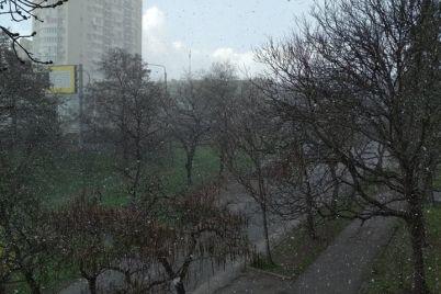 v-zaporozhe-sryvalsya-sneg-foto.jpg