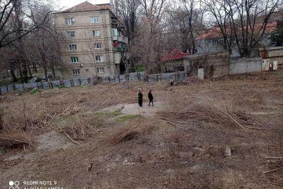 v-zaporozhe-territoriya-eks-gostiniczy-dnepr-zarosla-buryanom-na-vladelcza-nedostroya-sostavili-adminprotokol.jpg