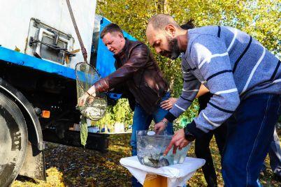 v-zaporozhe-v-dnepr-vypustili-5-tonn-ryby-fotoreportazh.jpg