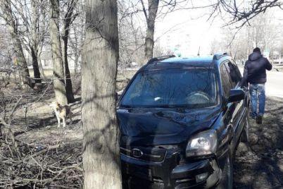 v-zaporozhe-voditel-avto-na-skorosti-vuehal-derevo-foto.jpg